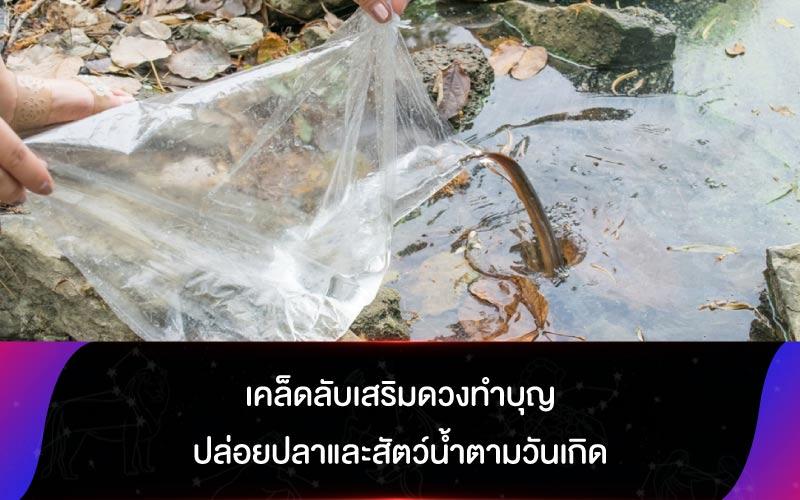 เคล็ดลับเสริมดวงทำบุญปล่อยปลาและสัตว์น้ำตามวันเกิด
