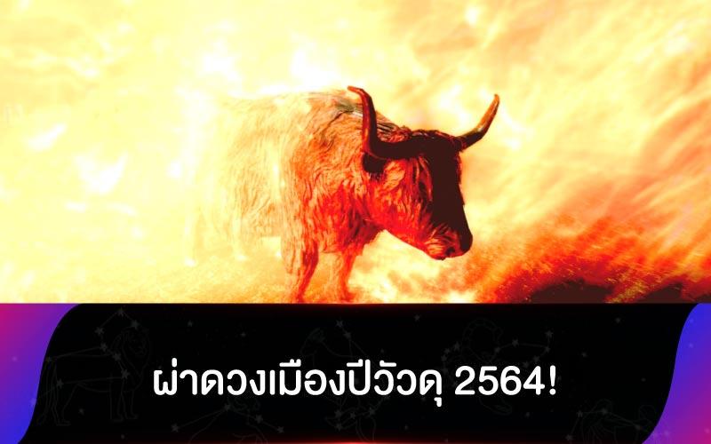 ผ่าดวงเมืองปีวัวดุ 2564!