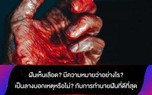 ฝันเห็นเลือด? มีความหมายว่าอย่างไร? เป็นลางบอกเหตุหรือไม่? กับการทำนายฝันที่ดีที่สุด
